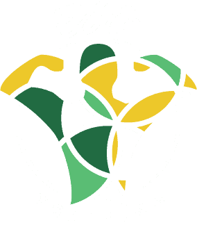logo ego training